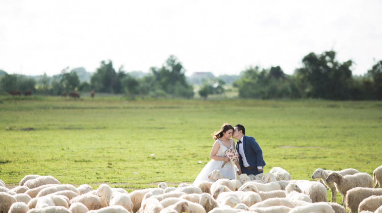 Review UK Wedding laws Escot